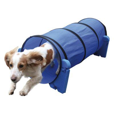 Tunnel Agility per addestramento Indoor