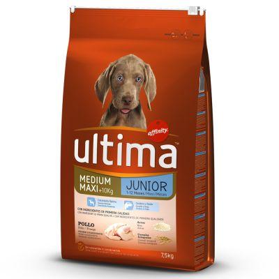 Ultima Medium / Maxi Junior Pollo