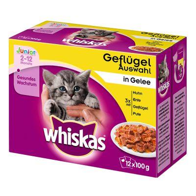 Whiskas Junior buste 12 x 100 g