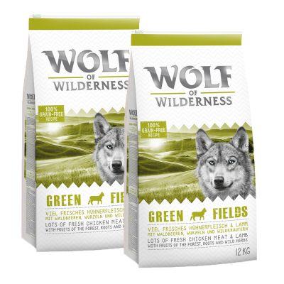 Wolf of Wilderness -säästöpakkaus 2 x 12 kg