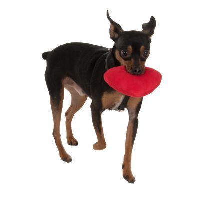 zoolove zabawka dla psa, serce